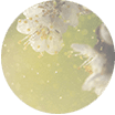 MySkinTrack Pollen